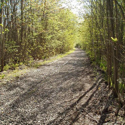 millennium trail 3